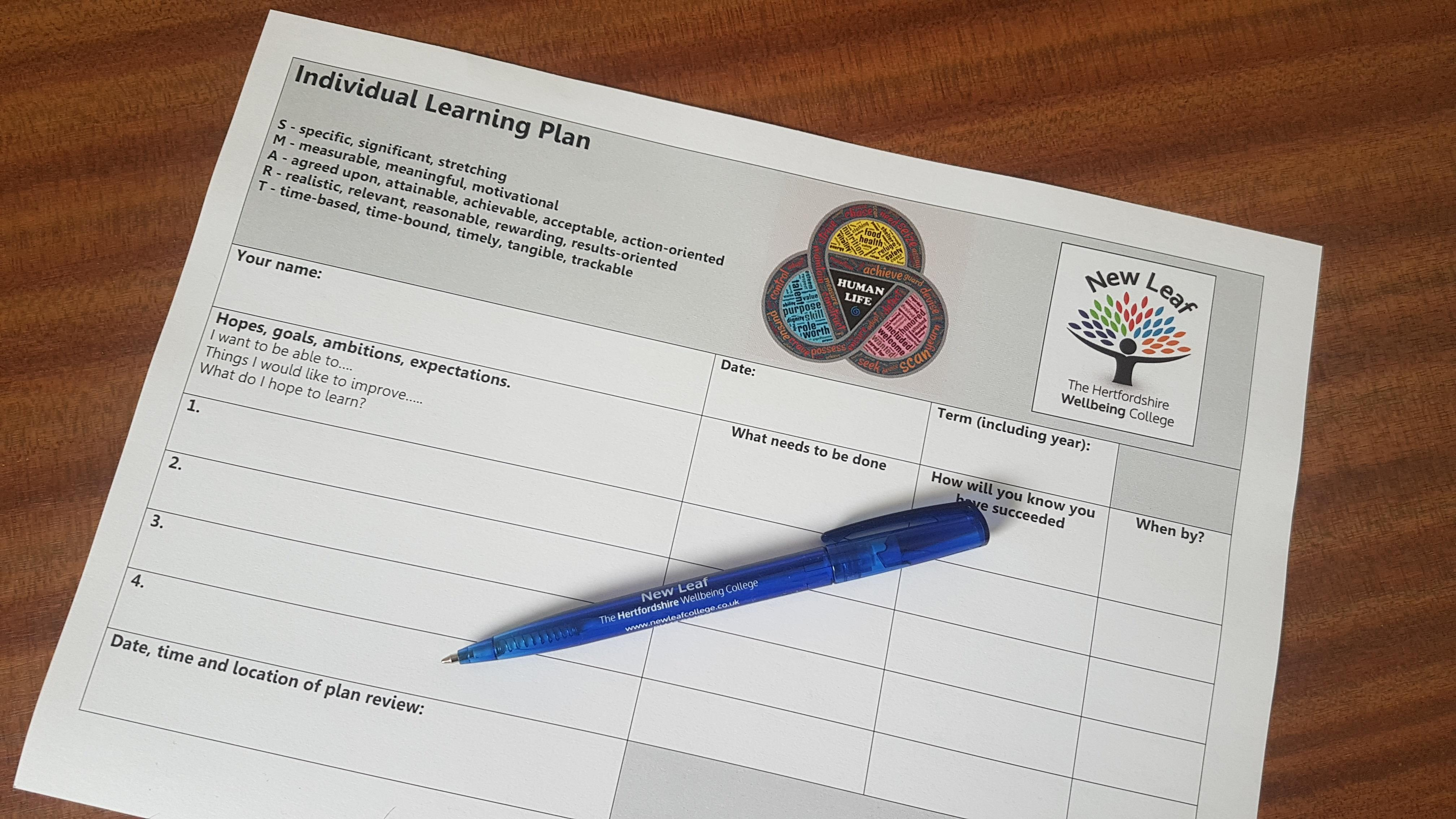 Individual learning plan